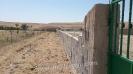Mezarlık Duvar Çalışmaları-3