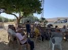 2019 Abdilli Köyü 3. Şenlik Resimleri-30
