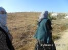 Abdilli Köyümüzden Resimler (2013)-34