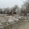 Köyümüz Kış Manzarası 2015-5